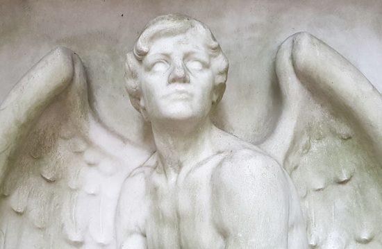 Vergissmeinnicht® – Abschied & Bestattung | Für Mensch und Tier