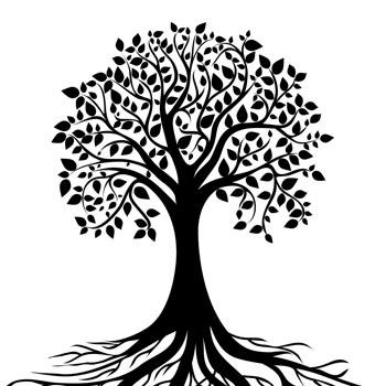 Eine Grafik zu Vorlagen und Literatur zum Erstellen eines Stammbaumes