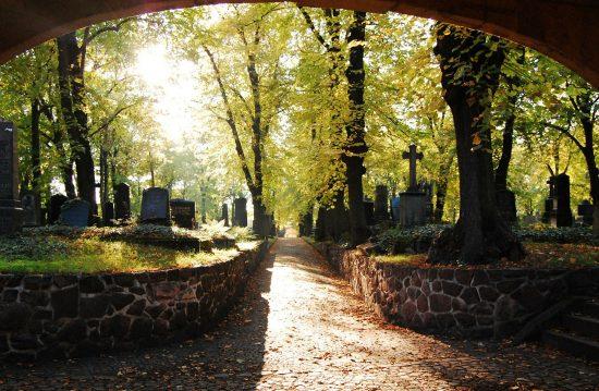 Städtische Friedhöfe von Offenbach am Main / Allgemeine Friedhofsverwaltung