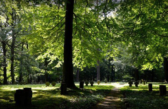 Städtische Friedhöfe von Regensburg / Allgemeine Friedhofsverwaltung