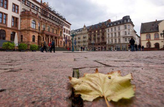 Rümpel Meister Wiesbaden – Entrümpelungen & Wohnungsauflösungen