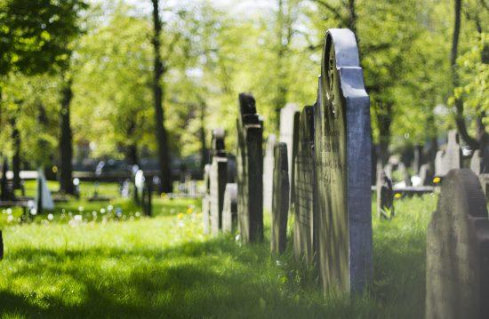 Städtische Friedhöfe von Schwerin / Allgemeine Friedhofsverwaltung
