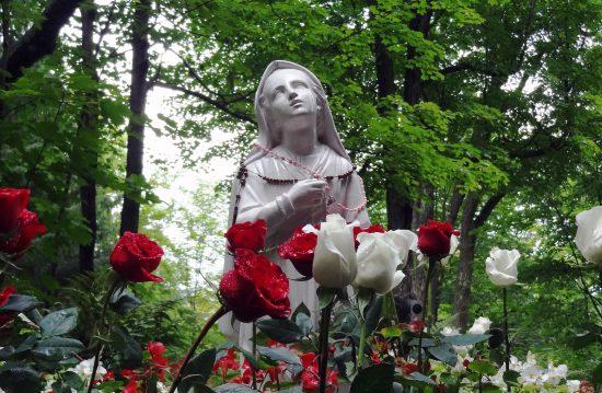 Städtischer Friedhof von Elmshorn / Allgemeine Friedhofsverwaltung