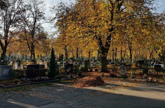 Städtische Friedhöfe von Waiblingen / Abteilung Grünflächen und Friedhöfe