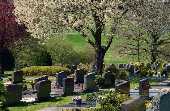 Städtische Friedhöfe von Bornheim / Allgemeine Friedhofsverwaltung