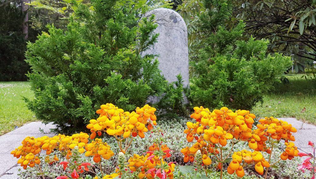 Katholischer Friedhof Essen Schönebeck